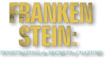 This is a great integrated lesson plan about Frankenstein, inventors and electricity. I would incorporate this into my classroom. *AF