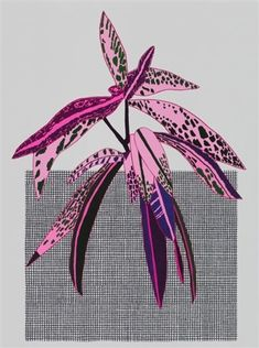 View Grid Pot With Pink Plant by Jonas Wood on artnet. Browse upcoming and past auction lots by Jonas Wood. Plant Illustration, Graphic Illustration, Graphic Art, Jonas Wood, Pink Plant, Motif Floral, Floral Illustrations, Botanical Art, Collage Art