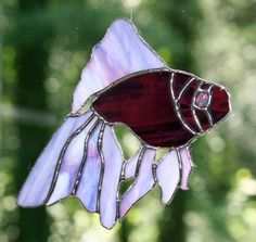 Stained Glass Purple Fish Suncatcher by Imakeglass on Etsy, $20.00