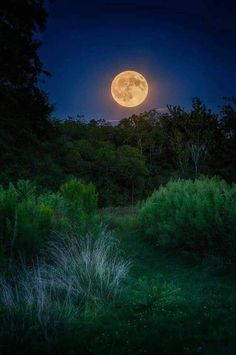 Rising Full Corn Moon - The rising of the full Corn Moon on evening of September 5 2017 from Bill Yeck Park in Centerville Ohio by Jim Crotty Moon Photos, Moon Pictures, Nature Pictures, Stars Night, Good Night Moon, Beautiful Moon, Beautiful Places, Corn Moon, Ciel Nocturne