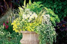 Container Ideas: Perennials in Pots from Birds & Blooms Magazine