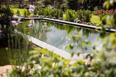 een rijkelijk met planten omringde strakke zwemvijver.