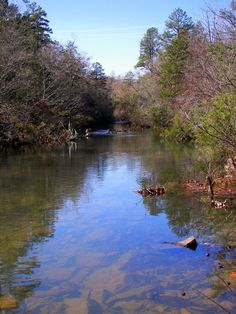 my favorite - a creek