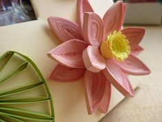 quilling képkeret tavirózsával / quilled water lily on photo frame