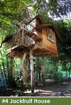 Chiangmai Treehouse Resort