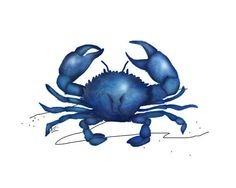 Blue Crab  nautical creature art painting by RedCreekDesignCo, $12.00