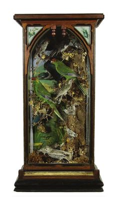 A late Victorian mahogany cased bird diorama featuring grey… - Natural History - Industry Science & Technology - Carter's Price Guide to Antiques and Collectables