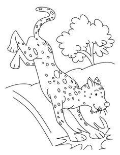 Chester Cheetah Guardian | Star Sasa | 305x236