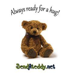 Send A Teddy Bear  #sendateddy #teddybeargifts http://goo.gl/rr6CXS