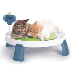 Catit Design Senses Comfort Zone is a multifunctional bed with a therapeutic cushion. It is a place where your #kittens can comfortably relax or be pampered. The unique cushion can be cooled for greater comfort for your #cat in the warm days. The cooled cushion will help in easing inflammation or to heal your #cats. Plus there is a multi-purpose massager which can stimulate their gums as well as clean their teeth. #PetCare247 #catbed