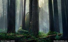 A #dragon hidden in the woods :} #PetesDragon