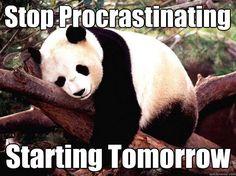 Workplace humor | Stop Procrastinating Starting Tomorrow...