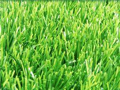 Cỏ Nhân Tạo Sân Bóng Đá VD08 - 50D12500 -190 http://www.thegioicosanvuon.net/