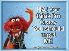 Animal my favorite muppets character Drummer, Ha you think I'm crazy you sold meet ME.