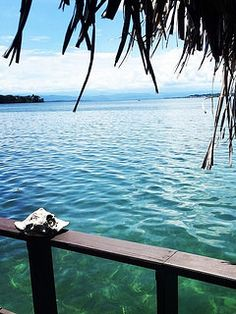 The view from our over-water bungalow in Panama! #panama #islabastimentos #eclypsedemar