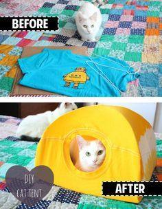 DIY - Hazlo tu mismo - So easy! Make a cat tent out of a t-shirt and hanger! Diy Cat Toys, Homemade Cat Toys, Diy Projects To Try, Craft Projects, Sewing Projects, Diy Zelt, Diy Jouet Pour Chat, Softies, Diy Old Tshirts