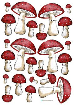Karte_Fliegenpilz_Glückspilz_basteln_card_mushroom_toadstool_handmade_craft_1