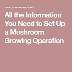 All the Information You Need to Set Up a Mushroom Growing Operation