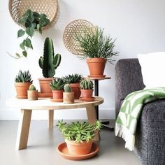 Körbe als Wanddekoration - super Trendy und kombiniert mit Kakteen, Sukkulenten. - Suja - Welcome to the World of Decor! Decoration Cactus, Home Decoration, Home Design, Interior Design, Interior Plants, Design Ideas, Interior Shutters, Interior Ideas, Jungle Vibes