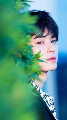 ASTRO Cha Eun Woo, Actors Male, Korean Actors, Saranghae, Estilo Dark, Cha Eunwoo Astro, Astro Wallpaper, Lee Dong Min, Pre Debut