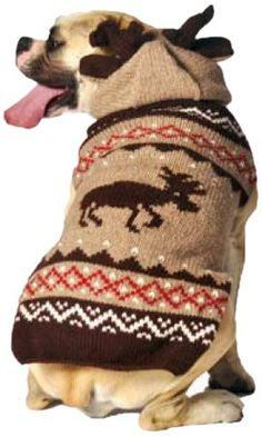 Chilly Dog Moosey Hoodie Dog Sweater, Medium -- To view further, visit now (This is an amazon affiliate link. I may earn commission from it)