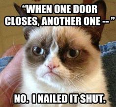 www.slapcaption.com/one-door-closes-grumpy-cat/   Funny Cats Compilation