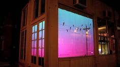 'Bird on a Wire' is a projected interactive display created for a pair of storefront windows at the corner Mercer St. and Washington Pl. in Manhattan