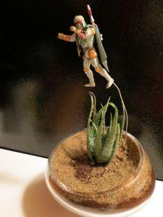 DIY- Boba Fett terrarium