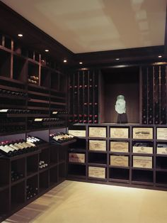 Contemporary Wine Cellar Design, Pictures, Remodel, Decor and Ideas - page 4