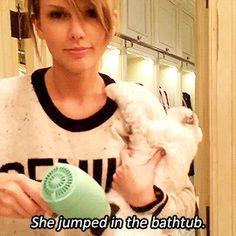 Olivia Benson everyone Taylor Swift Funny, Long Live Taylor Swift, Taylor Swift Videos, Taylor Alison Swift, Musica Country, Olivia Benson, Swift 3, Bae, Meredith Grey