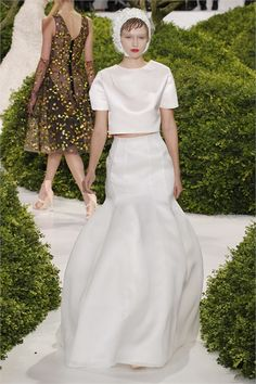 Two Piece Wedding Dress - Christian Dior - Haute Couture Spring Summer 2013