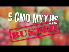 5 GMO Myths Busted