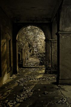 Toxteth Unitarian Chapel Cemetery, Liverpool by Dave Wood Liverpool Images, via Flickr