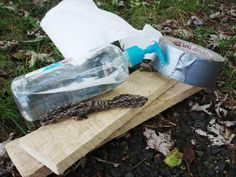 Survival Skills: How to Improvise Medical Supplies During an Emergency | Outdoor Life Survival