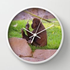 #Animals #Monkey #Modern Round Wall #Clock #Green #Brown #Decor #Rock #BoyRoom by #PhotographybyLadybug, $50.00 #fpoe