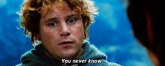Samwise is a precious babe and needs to be protected at all costs.