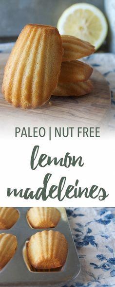Lemon Paleo Madeleines | Empowered Sustenance Grain Free Recipes