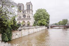 Inondations de Paris 2016 - Notre Dame sur Seine