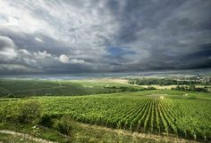 10 Amazing Wine Towns in Europe