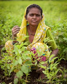 Gender-dimensions of climate-smart agriculture: what do we really know? | CCAFS: CGIAR research program on Climate Change, Agriculture and Food Security