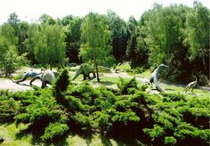 Silesian Zoological Garden - Chorzow Polen