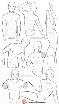 Male torso reference by Sellenin on DeviantArt Male torso reference ., drawings Male torso reference by Sellenin on DeviantArt Male torso reference . Male Pose Reference, Body Reference Drawing, Drawing Reference Poses, Anatomy Reference, Hand Reference, Reference Photos For Artists, Character Reference, Drawing Body Poses, Guy Drawing