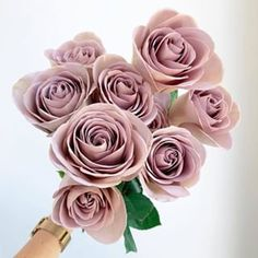 These amnesia roses are too perfect to be true! These amnesia roses are too perfect to be true! These amnesia roses are too perfect to be true! These amnesia roses are too perfect to be true! Sunflower Bouquets, Peonies Bouquet, Rose Bridal Bouquet, Bridesmaid Bouquet, Bridal Bouquets, Lavender Roses, Purple Roses, Amnesia Rose, Bridal Shower Prizes