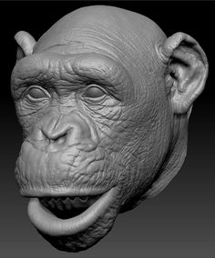 Cloth modeling pipeline with Marvelous designer Animals And Pets, Cute Animals, 3d Mode, Polymer Clay Sculptures, Animal Heads, Animal Sculptures, Orangutan, Creature Design, Character Design Inspiration