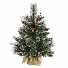 "2' x 16"""" Snow Tipped Pine/Berry Tree 52T"