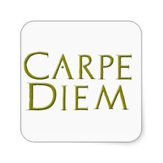 Image result for carpe diem latin script