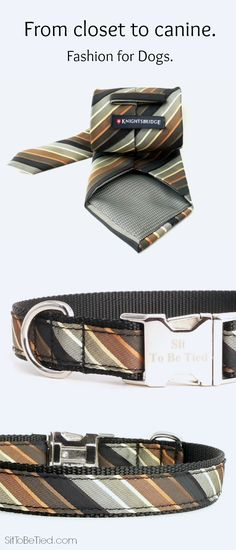 Black and brown dog collar created from a men's necktie. Sophisticated fashion for the dog