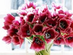 How to make cut flowers last longer--howdiniguru