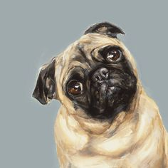 Tan Pug Dog print - signed Ltd. Ed Collectable - Pug art print - pug gift - Dogs. Dog Artist, Fawn Pug, Pugs And Kisses, Pug Art, Pug Pictures, Pug Puppies, Mundo Animal, Pug Love, Dog Portraits