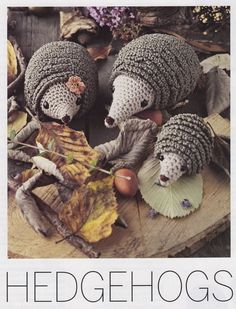 CROCHET PATTERN ONLY~Adorable Hedgehog Family Toys~Magazine Extract